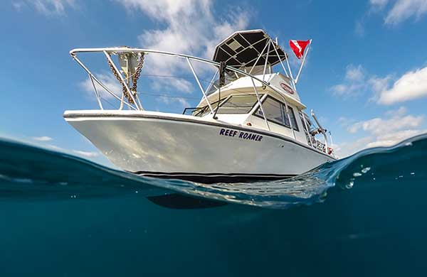 Reef Roamer Brownie's Dive Boat